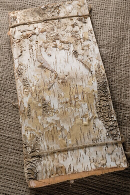 Birch Bark Sheet 15in | Pack of 6