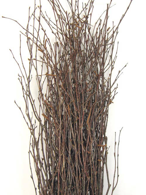 Natural Birch Branches 3 4ft 25 Branches
