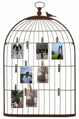 Wire Bird Cage Photo Holder with Clothespins