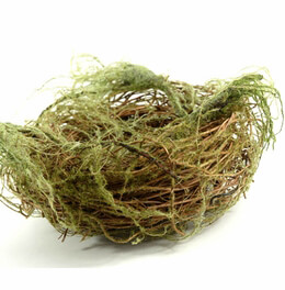 Bird Nest with Faux Moss 7in