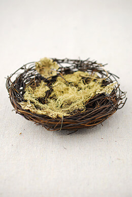 3 Bird Nest with Moss 5in