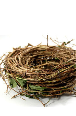 "Large Natural Honeysuckle 10"" Bird Nest Wreath"