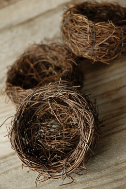 9 - 3 Inch Natural Twig Tiny  Bird Nests