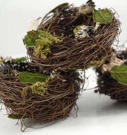 Bird Nests 3 x3 Angel Vine Leaves, Moss & Lichen