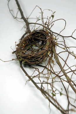 Bird Nest on Branch 23in