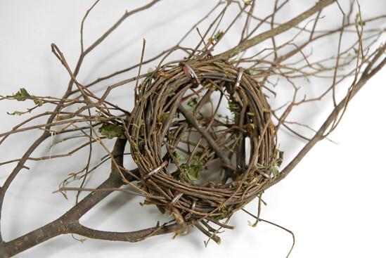 Bird Nest on  Natural Branch 23in