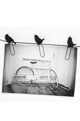 Birds on a Wire 8 Photo Clips Picture Hangers