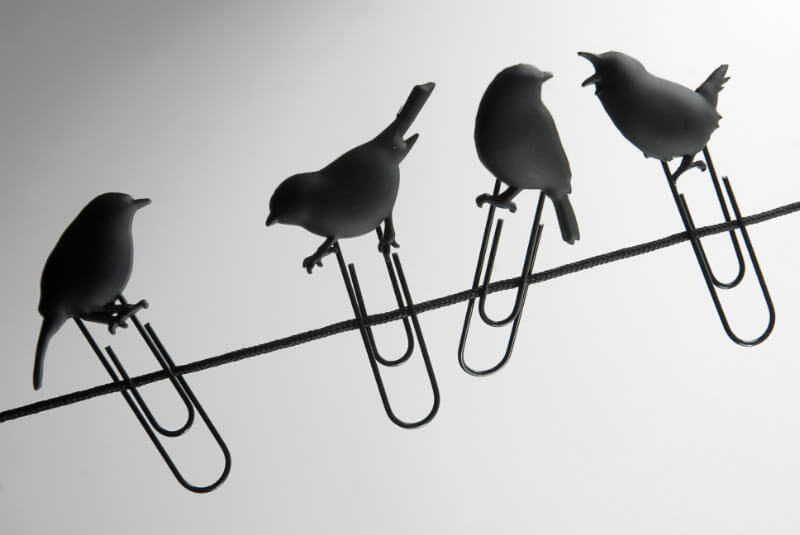 Fred & Friends BIRDS ON A WIRE Picture Hangers, Set of 8