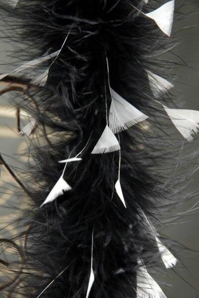 Black Marabou Feather Boas with Flat White Turkey Tips 30 gram