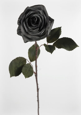 Black Silk Roses Green Leaves 21.5in