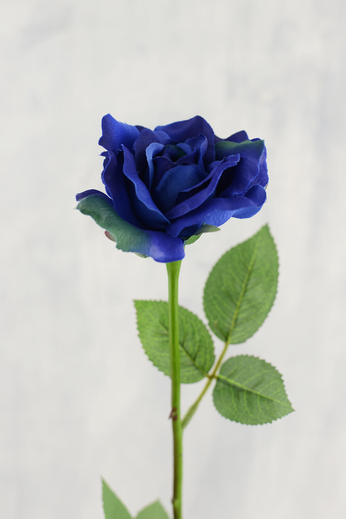 12 Blue Silk Roses 23in