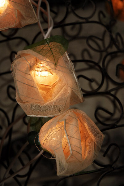 Bodhi Leaf Natural Rose String Lights 8 Foot