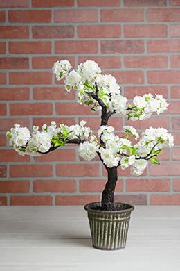 Cherry Blossom Bonsai Tree 23""