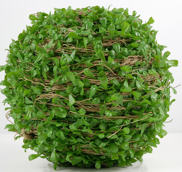 "Boxwood Balls 7"" with Natural Twigs Artificial Greenery"
