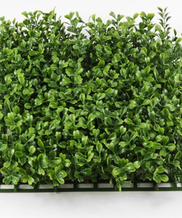 Boxwood Mat Artificial 10x10