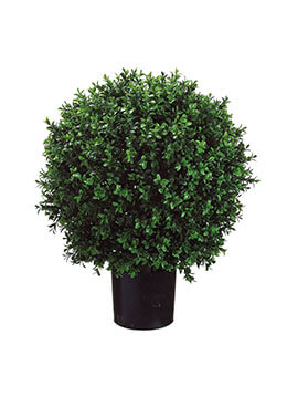 Boxwood Ball Topiary 25.5in