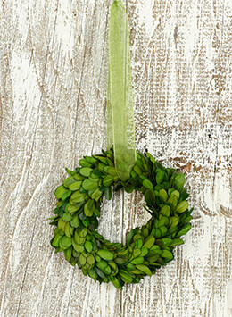Boxwood Wreath Preserved 5in