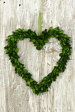 Boxwood Wreath Heart Preserved 11.5in