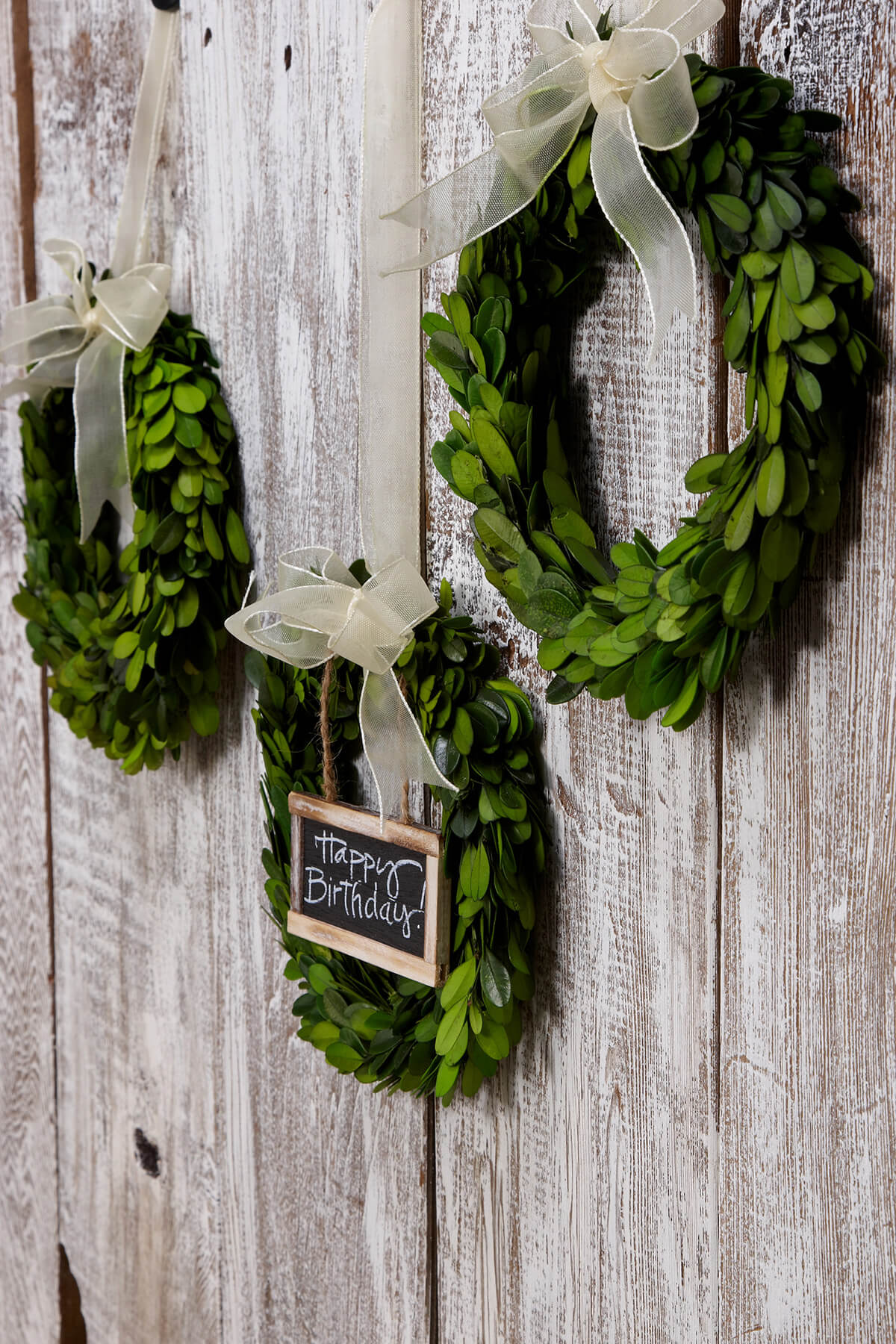 "8"" Preserved Round Boxwood Wreaths with Ribbon"