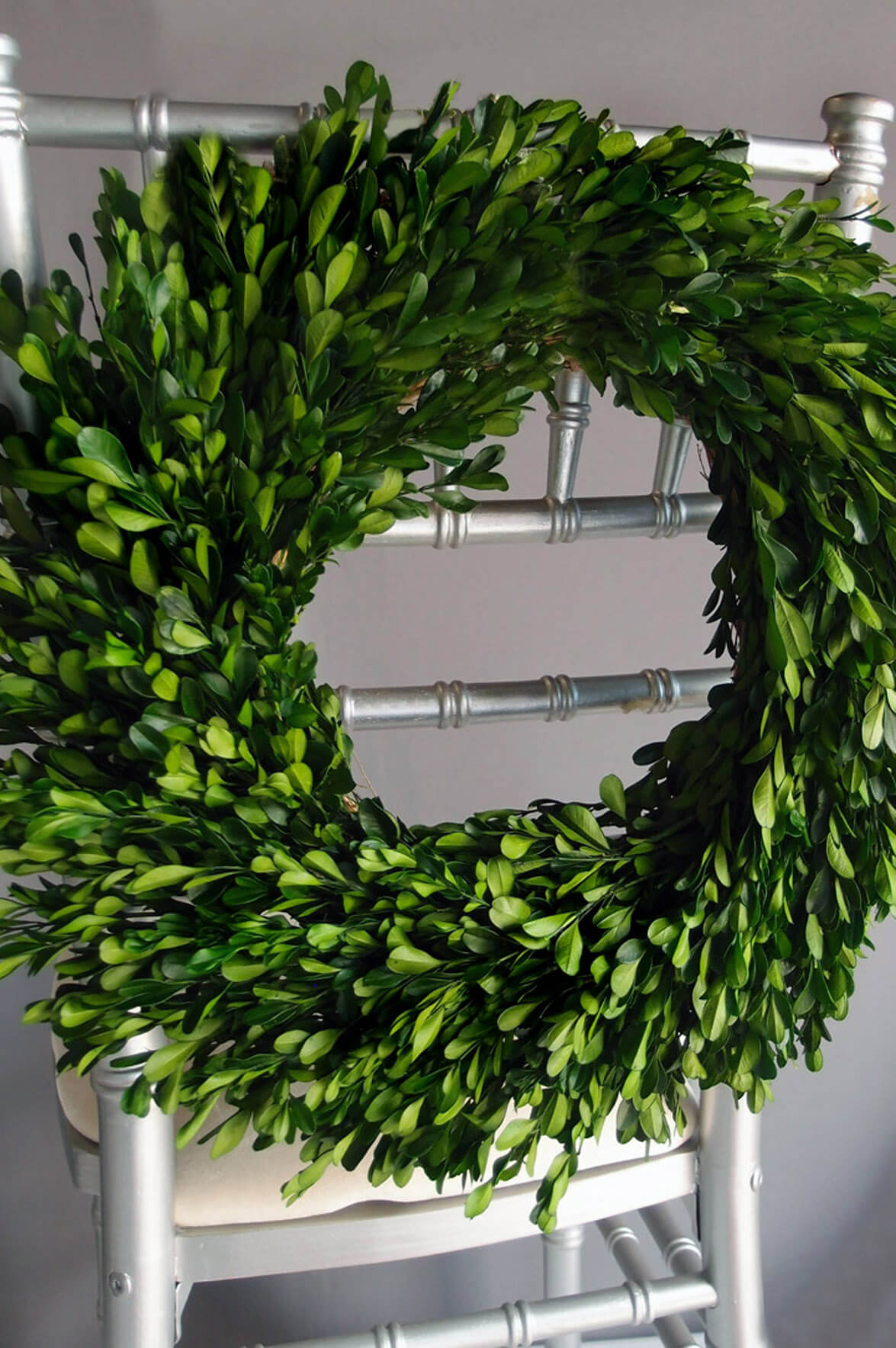 Preserving Tree Branches For Decoration Preserved Round Boxwood Wreath 16in