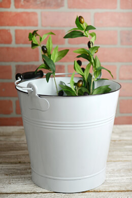 White Enamel 11in Bucket with Handle