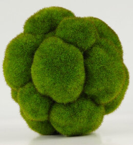 Cushion Moss Ball  5in