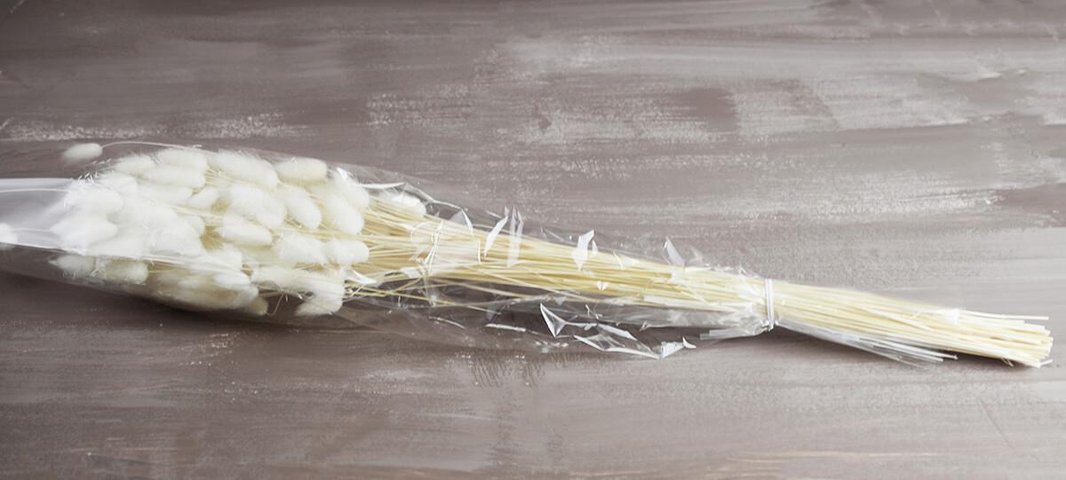 Italian Bleached Bunny Tails Ornamental Grass Bundle 2 Ounce