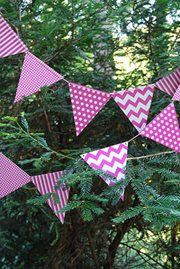 Bunting Banner Fuchsia Patterns (12 Pennants)