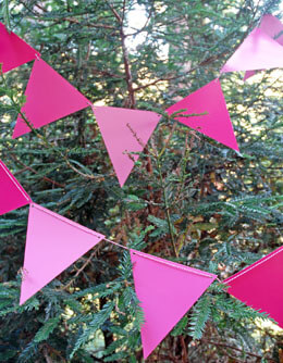 Bunting Banner Pink (12 Pennants)