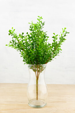 Artificial Boxwood Spray  12in