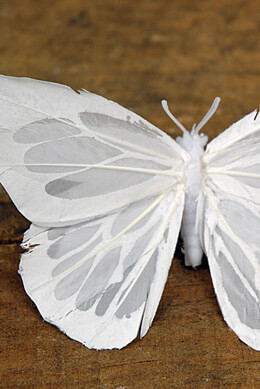 """3 Ivory White Feathered 5"""" Butterflies"""
