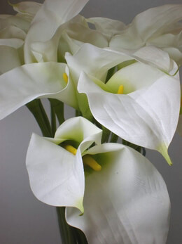 Calla Lilies White Silk Flowers (24 flowers)