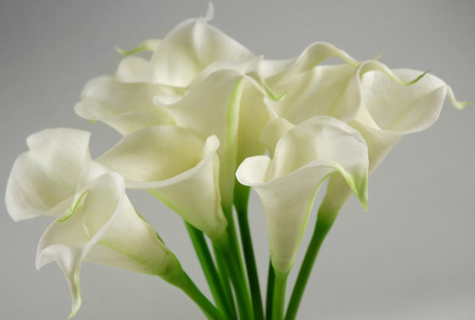 """Calla Lily Bouquet Natural Touch 14"""" Tall"""