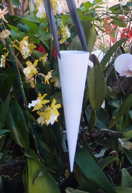 Cardboard Paper Cones White 12in