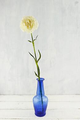 Carnation Flower Cream 21in