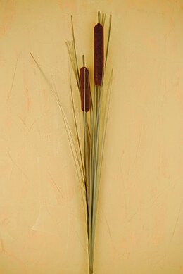 Cattail Spray Brown 32in (Pack of 12)