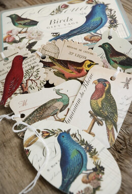 Bird Gift Tags|Pack of 36