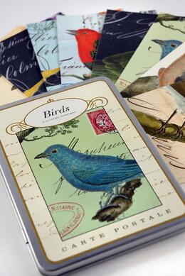 Cavallini Birds Vintage Postcards carte postele- 18 cards