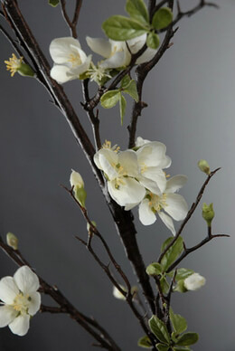 Cherry Blossom Branch White 57""