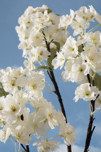 """Cherry Blossom Branches White Flowers 63"""" Tall Artificial"""