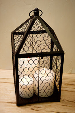 Chicken Wire Birdcage Black 17.75in