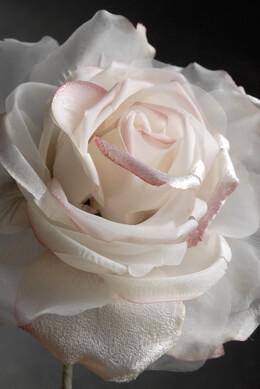 "Chiffon & Organza 15"" Roses Seashell White"