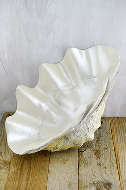 Large Resin Clam Shell Bowl 17.5in, Buffet Display Clam Shell