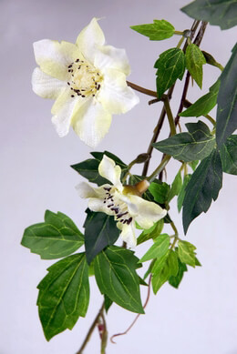"Clematis Cream White 30"" Garland"