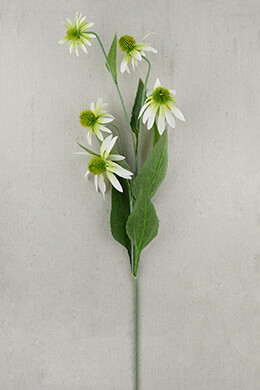 White Silk Coneflowers 5 Flowers 34in