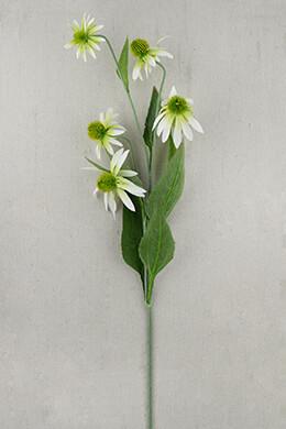 Coneflower Flower White 34in