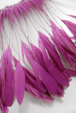 "Coque Feathers Dark Pink Stripped 6-8"" tall 12"" Strung Length"