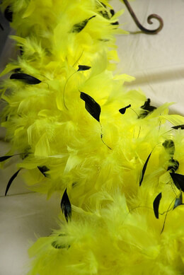 Coque Feathers Lime Green and Black Coque Feather Boa
