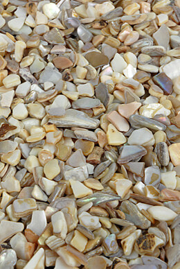 Crushed Shells Coarse 1.75 lbs