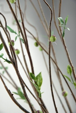 Curly Willow Branch 29in